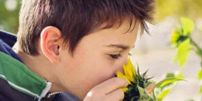 jongen ruikt aan bloem